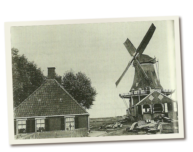 Dutch Roots Explorer
